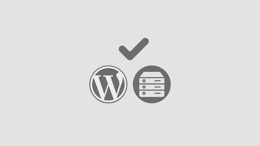 bester wordpress webhoster