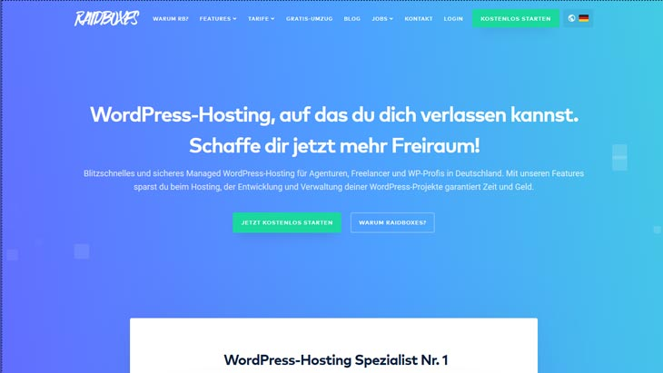 wordpress hosting raidboxes